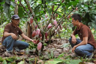 Integrated access to finance for small-holder farmers: starting an innovative agri-finance company in the Philippines